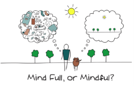 Read more about A Mindful Approach to Stress Management